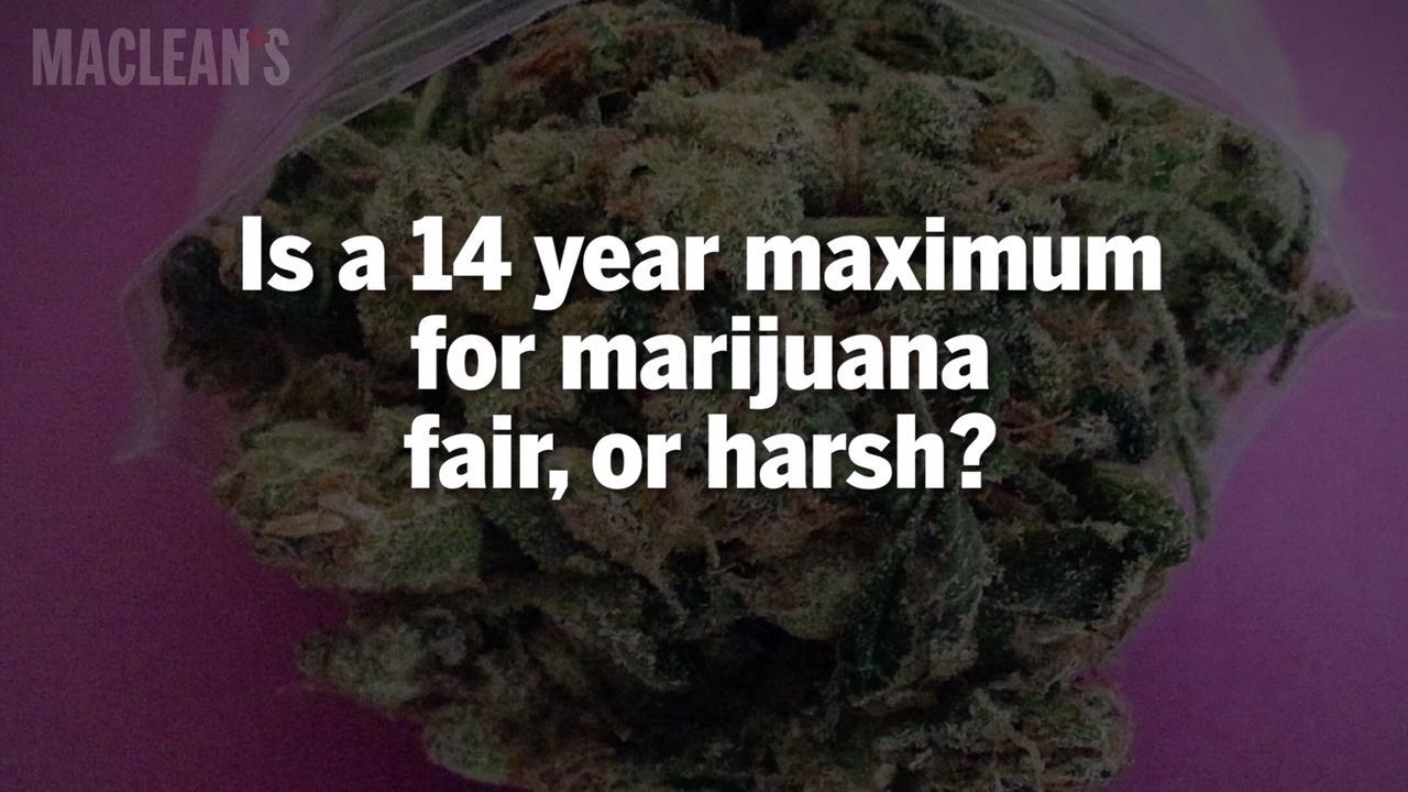 If you've ever smoked marijuana, beware of the U S  border - Macleans ca